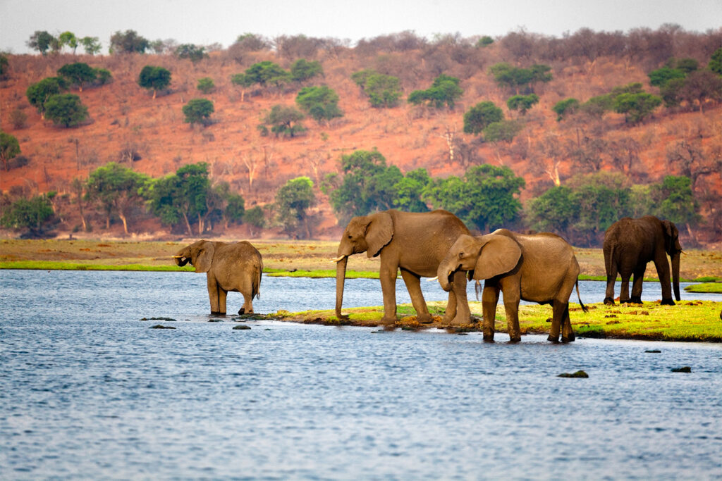 Most Famous Destinations In Africa