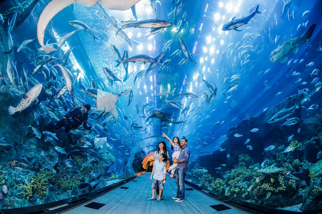 attraction 1294 main 5a0a84928a612 10 Places To Visit In Dubai