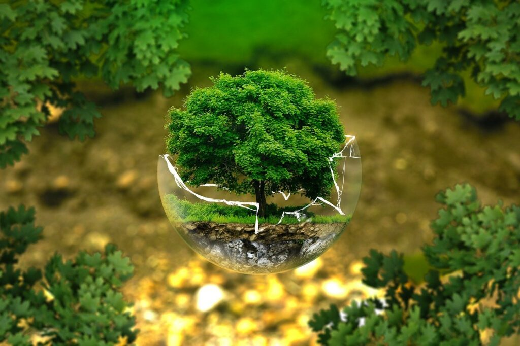 environmental protection 326923 1280 1 Apply Now for the 2021 Ecologists in Africa Grants