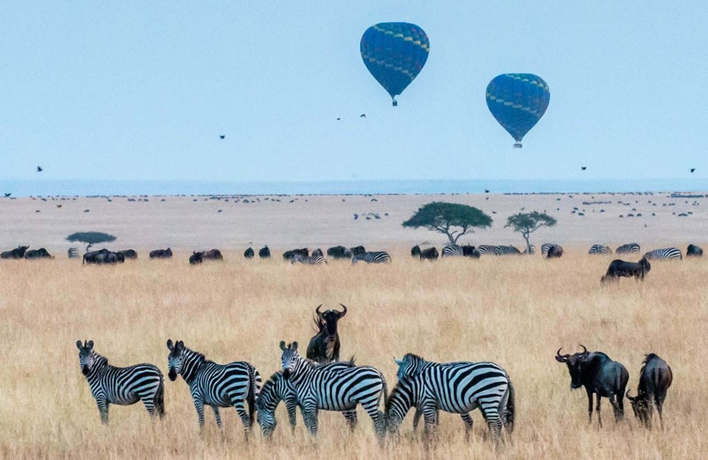 tanzania savannah zebras airballoons cover 2021 Africa Travel Guide: Fears, Destinations and Must-Haves