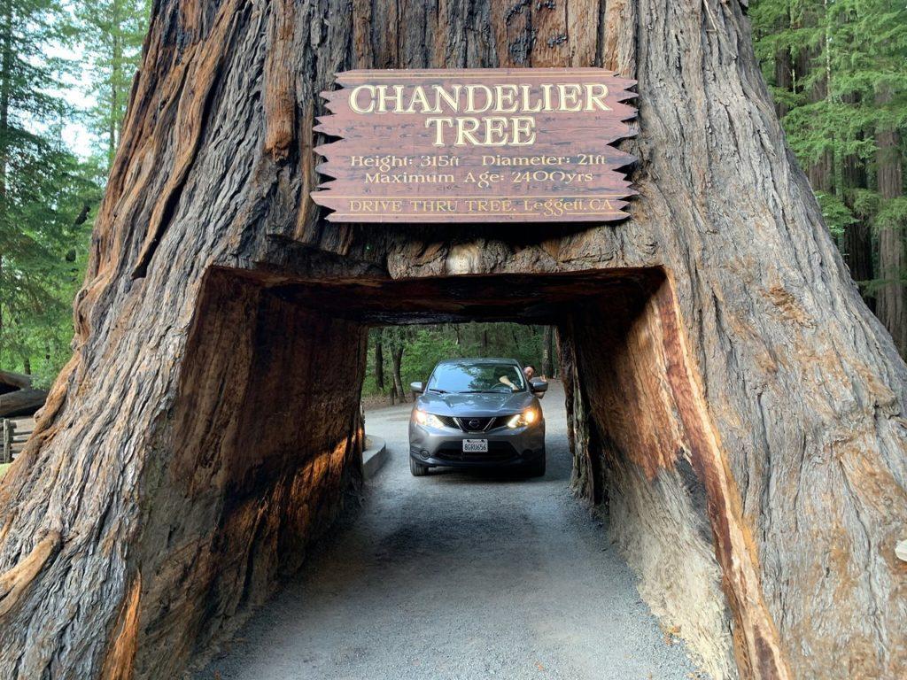 virtual park tours