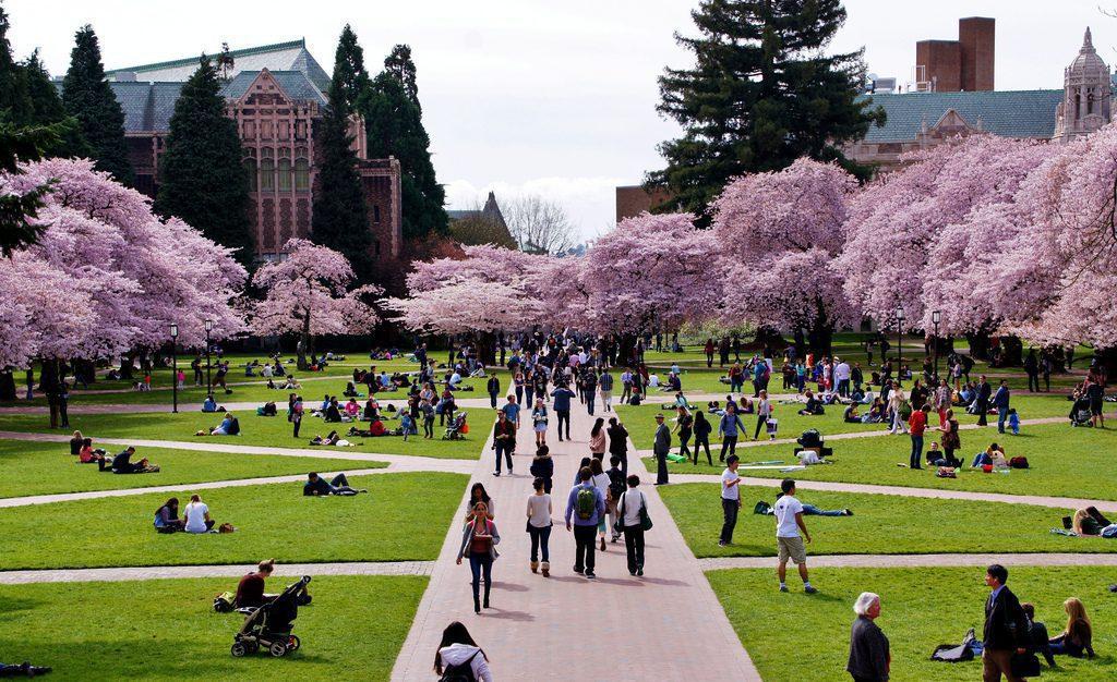 Cherries 10 Least Expensive Universities USA