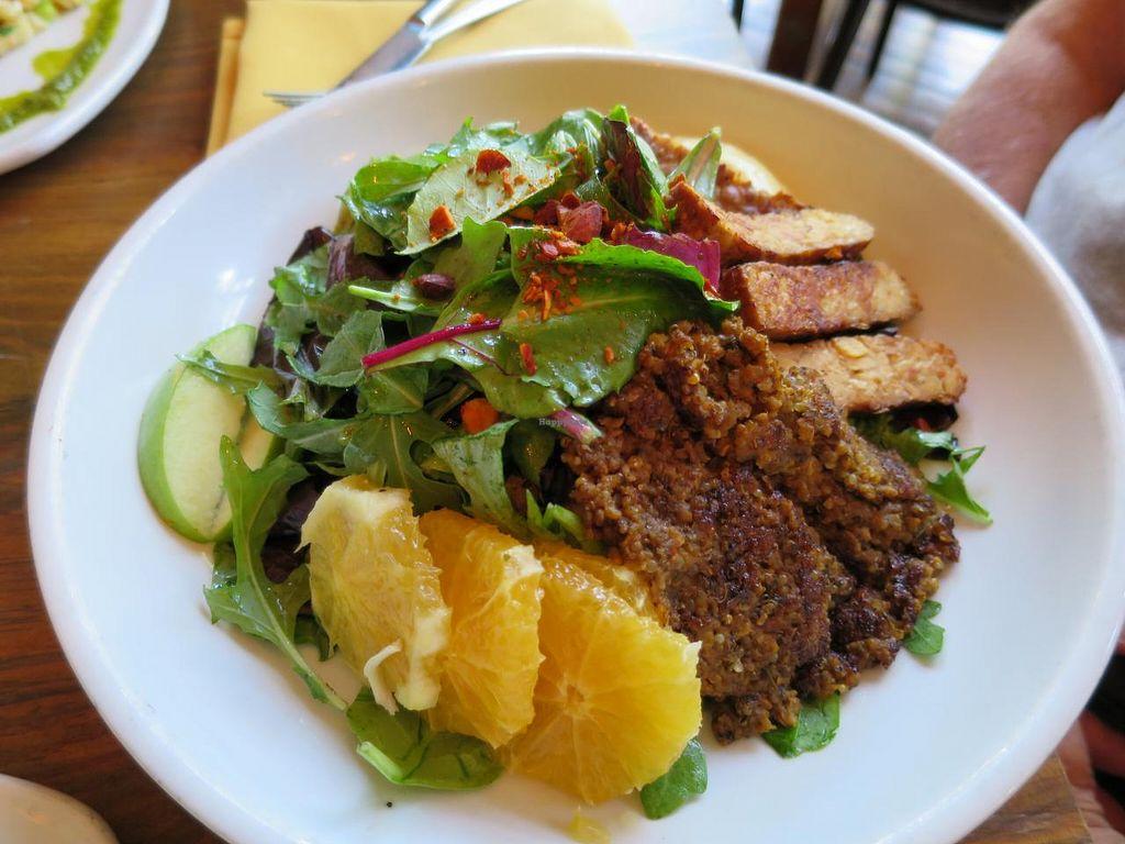 hcmp18615 110954 10 Best Vegan Restaurants in the USA