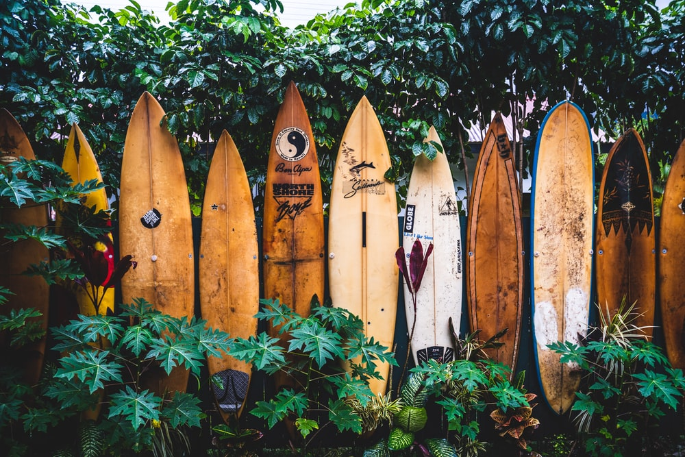 Best things to do in Maui: Top 10 things to do and sights of Maui